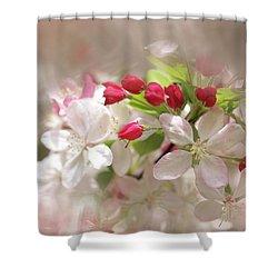 Apple Buds Shower Curtain