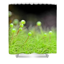 Apple Moss Shower Curtain