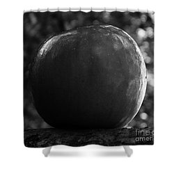 Shower Curtain featuring the photograph Apple One by J L Zarek