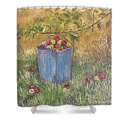 Apple Pickin'  Shower Curtain