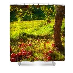 Apple Picking Shower Curtain by Joann Vitali
