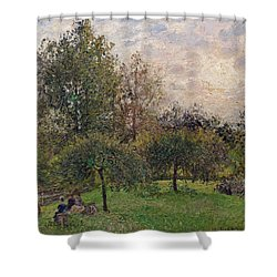 Apple Trees And Poplars In The Setting Sun Shower Curtain by Camille Pissarro