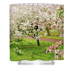 Apple Trees In Bloom Shower Curtain by Jessica Jenney