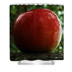 Shower Curtain featuring the photograph Apple  Two by J L Zarek