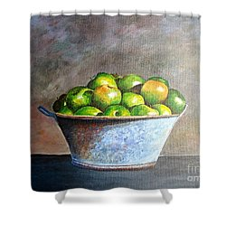 Apples In A Rusty Bucket Shower Curtain