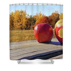 Apples On A Hayride Shower Curtain
