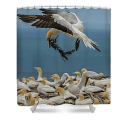 Shower Curtain featuring the photograph Applying The Brakes by Werner Padarin