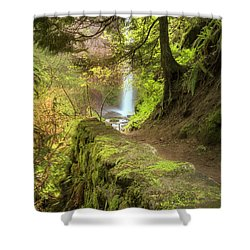 Approaching Latourell Shower Curtain