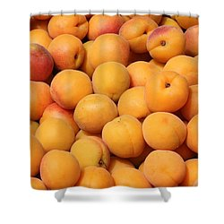 Apricots Shower Curtain by Carol Groenen