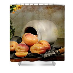 Apricots Shower Curtain by Diana Angstadt