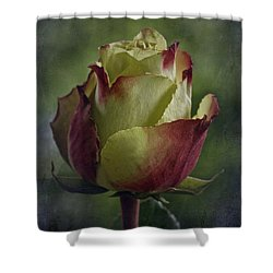 April 2017 Rose - Inspired By Emerson Shower Curtain by Richard Cummings