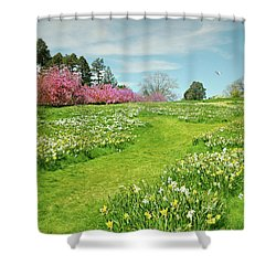 Shower Curtain featuring the photograph April Days by Diana Angstadt
