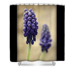 Shower Curtain featuring the photograph April Indigo by Chris Berry