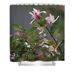 April Showers 7 Shower Curtain by Antonio Romero