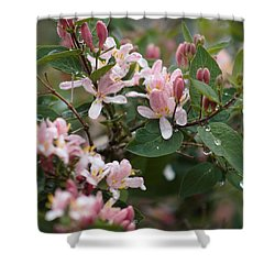 April Showers 8 Shower Curtain by Antonio Romero