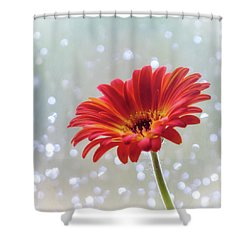 Shower Curtain featuring the photograph April Showers Gerbera Daisy Square by Terry DeLuco