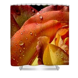 Shower Curtain featuring the photograph April Showers by Marie Neder