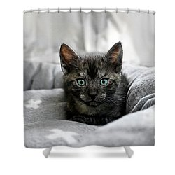 Aqua Eyes By Kaye Menner Shower Curtain