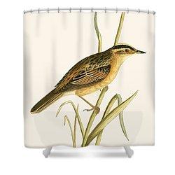 Aquatic Warbler Shower Curtain