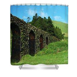 Aqueduct Shower Curtain by Gaspar Avila