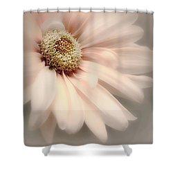 Shower Curtain featuring the photograph Arabesque In Peach Glow by Darlene Kwiatkowski