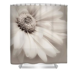 Shower Curtain featuring the photograph Arabesque In Soft Charcoal by Darlene Kwiatkowski
