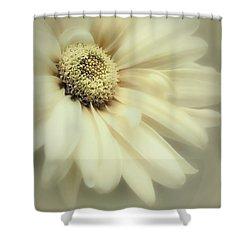 Shower Curtain featuring the photograph Arabesque In Soft Moss by Darlene Kwiatkowski