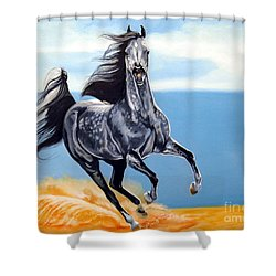 Arabian Dreams Shower Curtain