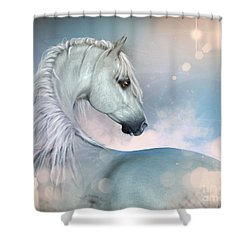 Arabian Gaze 2 Shower Curtain