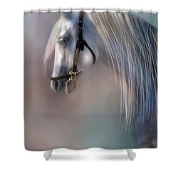 Arabian Grey Shower Curtain
