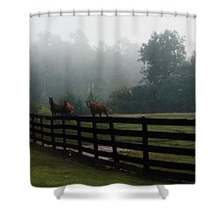Shower Curtain featuring the painting Arabian Horse Landscape by Debra Crank