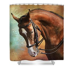 Arabian Horse Shower Curtain by Theresa Tahara