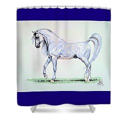 Arabian Stallion  Shower Curtain by Cheryl Poland