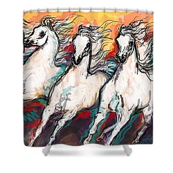 Arabian Sunset Horses Shower Curtain