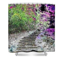 Arbor Pathway Shower Curtain by Tim Allen