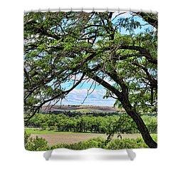 Arbor Vista Shower Curtain