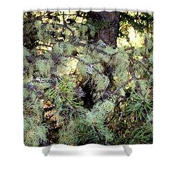 Arboreal Lichens Shower Curtain