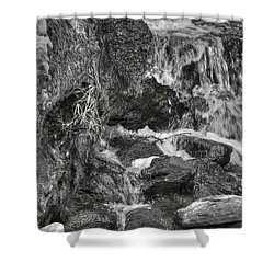 Arboretum Waterfall Bw Shower Curtain by Richard J Cassato