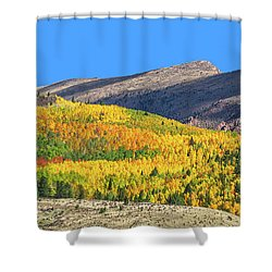 Arcas Is The King Of Arcadia, The Home Of God Pan. Shower Curtain by Bijan Pirnia