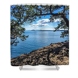 Arch Of Trees Shower Curtain by William Wyckoff