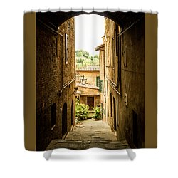 Arched Alley Shower Curtain