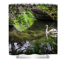 Arched Bridge And Swan At Doneraile Park Shower Curtain