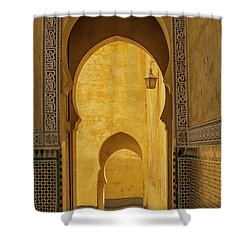 Arched Doors Shower Curtain