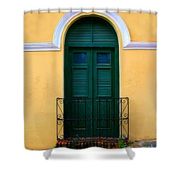 Arched Doorway Shower Curtain by Perry Webster