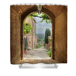 Arched View Shower Curtain