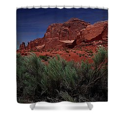 Arches Scene 3 Shower Curtain