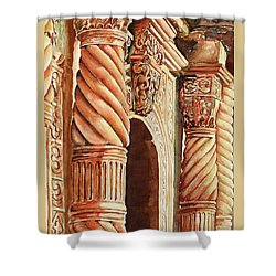 Architectural Immersion Shower Curtain