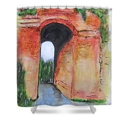 Arco Felice, Revisited Shower Curtain