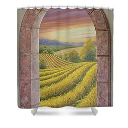 Arco Vinal Shower Curtain by Angel Ortiz