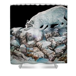 Shower Curtain featuring the painting Arctic Encounter by Sherry Shipley